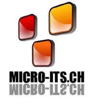 Micro ITS